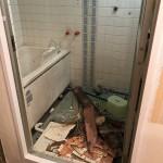 リフォーム前造りの浴室